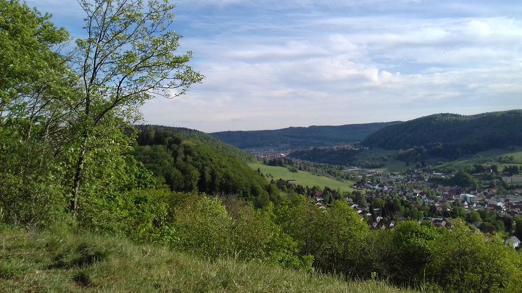 Blick vom Meinetshaldenfelsen nach Ebingen